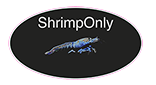 Shrimponly
